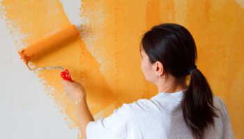 Валики для покраски: разновидности и особенности использования