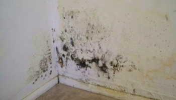 Утепление стены изнутри минеральной ватой с пароизоляцией